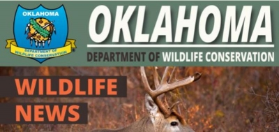 Proposed Fish, Wildlife Rule Changes Now Open for Public Comments