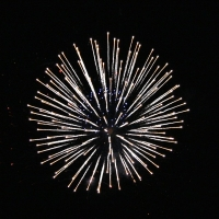 4 Tips to ease firework anxiety this 4th of July
