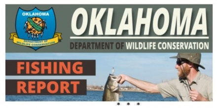 Southeast Area Lakes Fishing Report for Sept 23